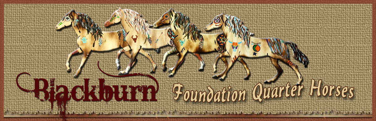 Blackburn Foundation Quarter Horses